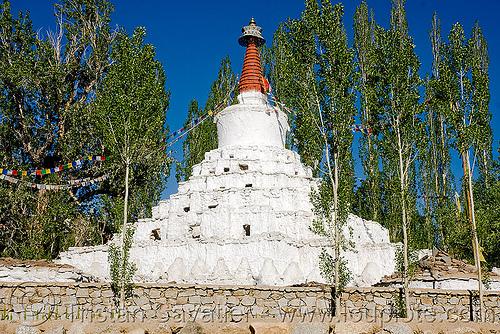 gomang gompa stupa - leh - ladakh (india), chorten, gomang gompa, ladakh, leh, stupa, tibetan monastery, लेह