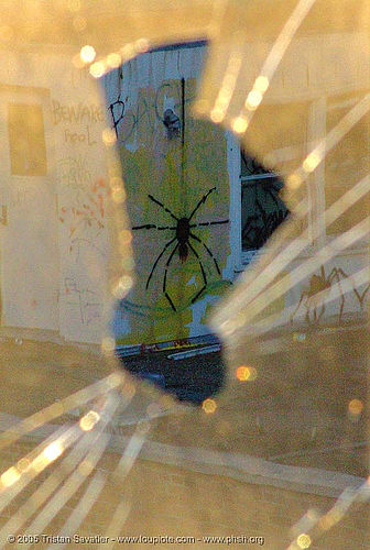 graffiti-spider - broken window - abandoned hospital (presidio, san francisco) - phsh, abandoned building, abandoned hospital, graffiti, presidio hospital, presidio landmark apartments, spider, trespassing, window