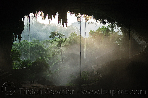 the great cave at gua niah - niah caves - natural cave in rain forest (borneo), backlight, birds-nest, borneo, cave formations, cave mouth, caving, concretions, fog, foggy, gua niah, hazy, malaysia, mist, misty, natural cave, niah caves, rain forest, speleothems, spelunking, stalactites