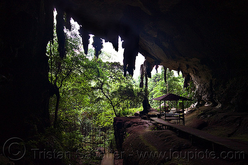 natural cave (borneo), backlight, cave formations, cave mouth, caving, concretions, forest, jungle, niah, niah caves, rain forest, speleothems, spelunking, stalactites