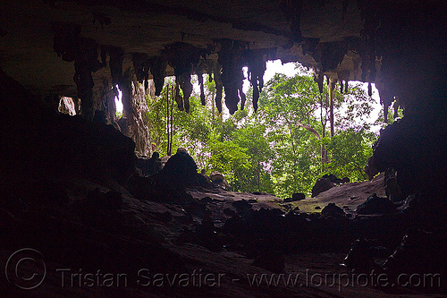 gua niah - natural cave in rain forest (borneo), backlight, cave formations, cave mouth, caving, concretions, gua niah, natural cave, niah caves, niah painted cave, rain forest, speleothems, spelunking, stalactites
