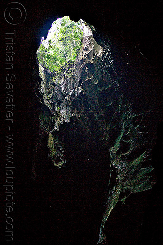 gua niah - sinkhole in roof of natural cave, backlight, borneo, caving, gua niah, jungle, malaysia, natural cave, niah caves, rain forest, sinkhole, spelunking