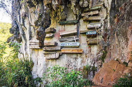 hanging coffins (philippines), cemetery, cliff, echo valley, grave, hanging coffins, philippines, sagada, tomb