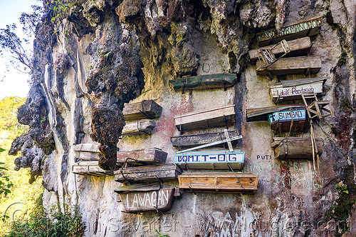 hanging coffins - sagada (philippines), cemetery, cliff, echo valley, grave, hanging coffins, philippines, sagada, tomb