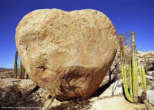 heart-shaped boulder, boulder, cactus, love, rock