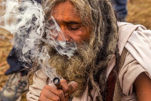 hindu baba smoking chillum of bhang (ritual cannabis), beard, dreads, hinduism, kumbh mela, kumbha mela, maha kumbh, maha kumbh mela, man, marijuana, people, pipe, sadhu, smoke