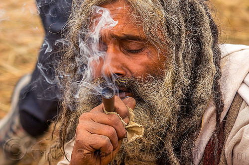 hindu baba smoking chillum - ritual cannabis, baba, beard, cannabis, chillum, dreadlocks, dreads, hindu, hinduism, kumbha mela, maha kumbh mela, man, marijuana, pipe, sadhu, smoke, smoking