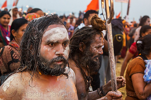 hindu devotee - kumbh mela hindu festival (india), beard, crowd, hindu, hinduism, holy ash, kumbha mela, maha kumbh mela, men, naga babas, naga sadhus, naked, procession, sacred ash, sadhu, trident, vasant panchami snan, vibhuti, walking