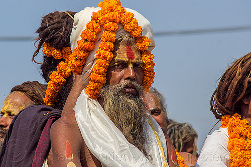 hindu guru with orange flowers headdress - kumbh mela (india), float, gurus, hindu pilgrimage, hinduism, india, kumbh maha snan, maha kumbh mela, man, mauni amavasya, parade, turban