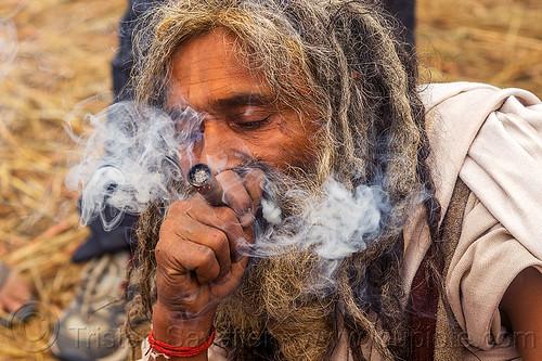 hindu sadhu smoking chillum of ritual cannabis (bhang), baba, beard, bhang, cannabis, chillum, dreads, hindu, hinduism, kumbha mela, maha kumbh mela, man, marijuana, pipe, sadhu, smoke, smoking