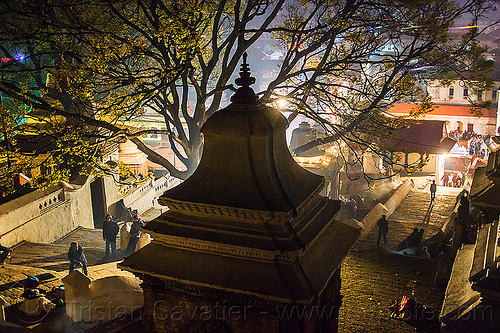 hindu shrine near the pashupatinath temple - kathmandu (nepal), backlight, hindu temple, hinduism, kathmandu, maha shivaratri, night, pashupatinath temple, shrine, stairs, steps, stupa, tree