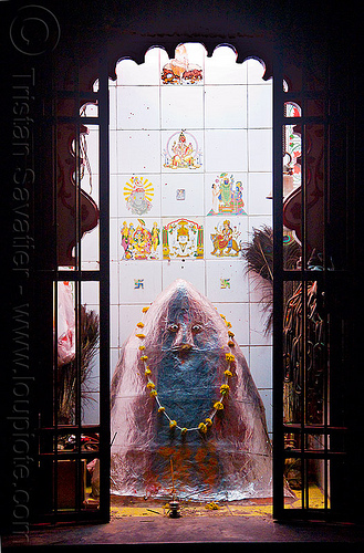 hindu shrine to khandoba - mallanna - udaipur (india), door, flower necklace, hindu deity, hindu god, hindu shrine, hinduism, hingu temple, india, khanderao, khanderaya, khandoba, mailar malanna, mailara linga, malhari martand, mallanna, mallu khan, mārtanda bhairava, offerings, peacock feathers, shiny, shiva lingam, statue
