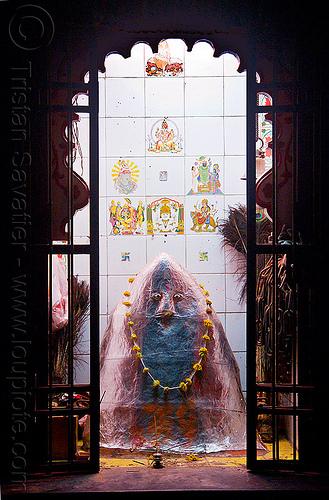 hindu shrine to khandoba - udaipur (india), door, flower necklace, hindu deity, hindu god, hindu shrine, hinduism, hingu temple, khanderao, khanderaya, khandoba, mailar malanna, mailara linga, malhari martand, mallanna, mallu khan, mārtanda bhairava, offerings, peacock feathers, religion, shiny, shiva lingam, statue