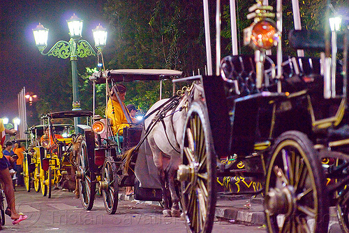horse carriages on malioboro street, horse carriages, java, jogja, jogjakarta, malioboro, night, parked, street, yogyakarta