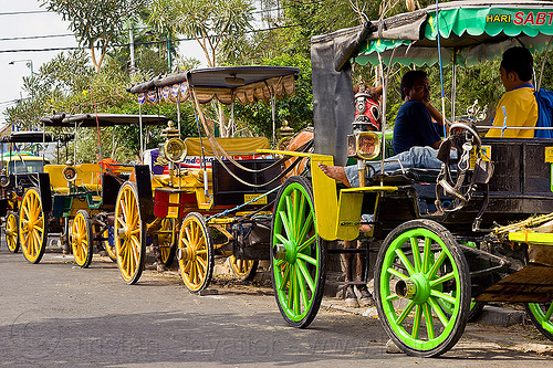 horse carriages parked, draft horses, draught horse, horse carriages, indonesia, jogja, parked, yogyakarta