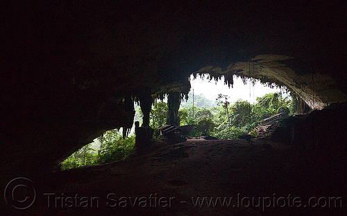 huge natural cave - gua niah - niah caves national park (borneo), backlight, borneo, cave formations, cave mouth, caving, concretions, gua niah, jungle, malaysia, natural cave, niah caves, rain forest, speleothems, spelunking, stalactites
