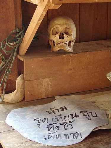 human skull - thailand, ban mueang na, human, skull, tham wat, ประเทศไทย