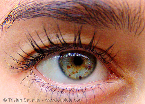 eye iris freckles, close up, eye color, eye freckles, eyelashes, iris freckles, lucile, macro, pupil, right eye, spots, spotted, woman
