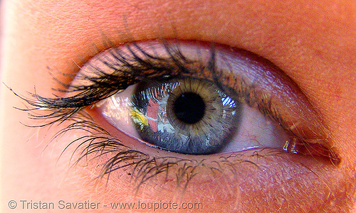 is that your eye?, close up, eye color, eyelashes, iris, macro, mascara, pupil, right eye, woman