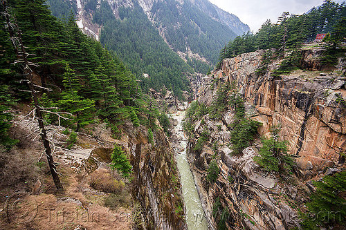 jadh ganga canyon (india), bhagirathi valley, cliffs, forest, gorge, mountains, river, water
