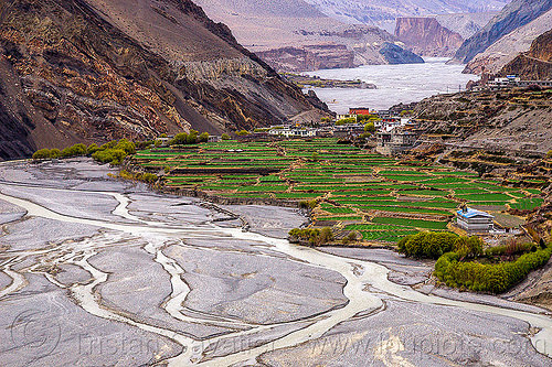 kagbeni village (nepal), annapurnas, kagbeni, kali gandaki river, kali gandaki valley, mountains, river bed, terrace agriculture, terrace farming, terrace fields, village, water