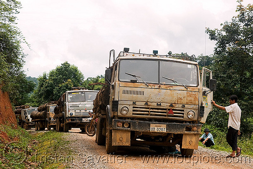 Камаз - KAMAZ russian logging trucks convoy (laos), convoy, deforestation, dirt road, kama automobile zavod, kamaz, kamskiy avtomobilny zavod, log truck, logging trucks, lorry, timber, tree logging, tree logs, trees, unpaved, wood, камаз, камский автомобильный завод