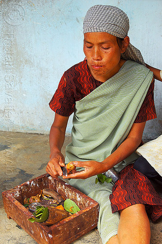 khasi woman preparing betel nut (india), areca nut, betel leaves, betel nut, betel quids, box, east khasi hills, india, indigenous, knife, mawlynnong, meghalaya, preparing, woman