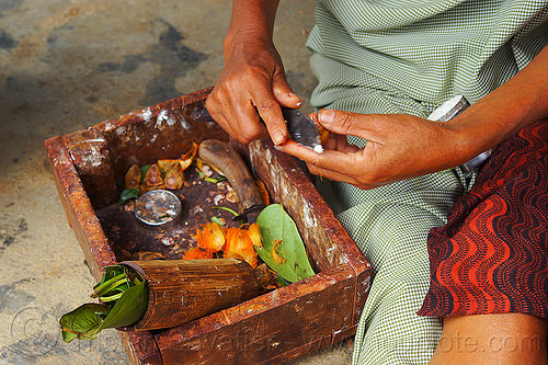khasi woman preparing betel nut (india), areca, areca nut, betel leaves, betel quids, box, east khasi hills, indigenous, knife, mawlynnong, meghalaya, people