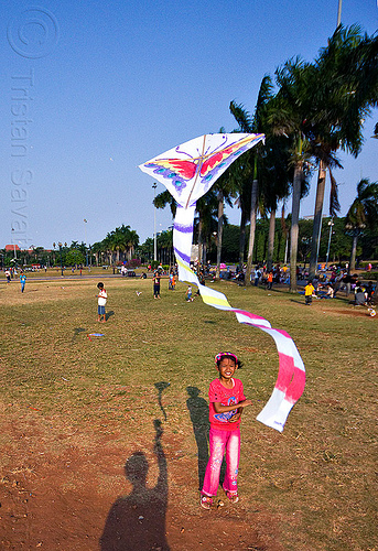 kid flying a kite in merdeka square (jakarta), child, eid ul-fitr, flying, indonesia, jakarta, kid, kite, medan merdeka, merdeka square, palm trees, park