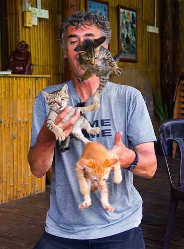 kitten juggling, borneo, cat juggling, cats, flying, ginger kitten, juggler, kittens, mackerel tabby, malaysia, man, self portrait