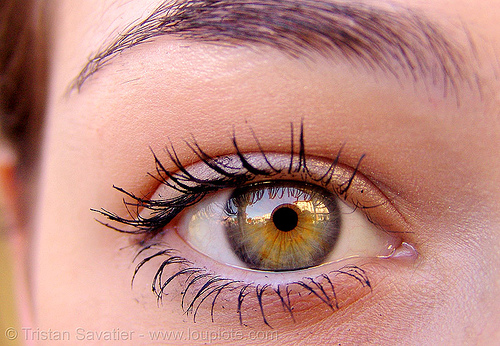 lindsey's amazing eye, close up, eye color, eyelashes, hazel, iris, lindsey, macro, mascara, pupil, right eye, woman