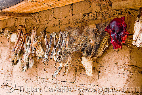 llama organs drying on a line, abra el acay, acay pass, drying, feet, goat, halal, legs, llama meat, mutton, noroeste argentino, organs, raw meat, stomac, tripe meat, tripes