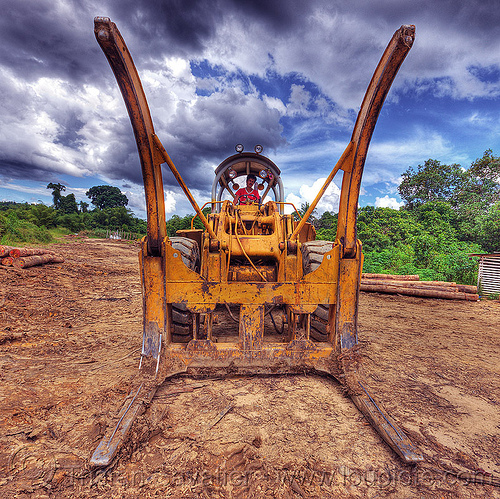 logging forks on wheel loader (borneo), at work, borneo, cat 966c, caterpillar 966c, clouds, cloudy sky, deforestation, environment, front loader, logging camp, logging forks, malaysia, wheel loader, working, yellow