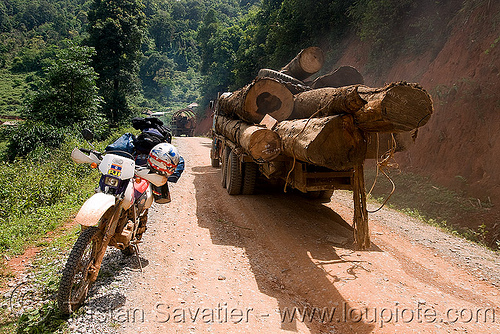 logging truck convoy - honda XR 250 (laos), 250cc, convoy, deforestation, dirt road, dual-sport, honda motorcycle, honda xr 250, laos, log truck, logging trucks, lorry, motorcycle touring, timber, tree logging, tree logs, trees, unpaved, wood