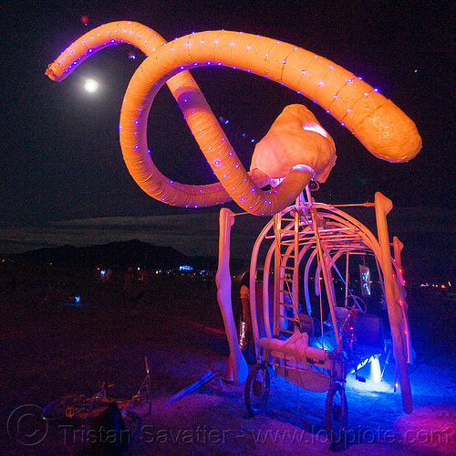 ma-am the mammoth - burning man 2009, art car, burning man, full moon, glowing, led lights, ma'am, mammoth, night, tusks