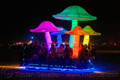 magic mushrooms, art car, burning man, magic mushrooms, mushroom patch, night