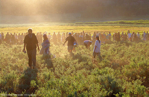main-circle - rainbow gathering - hippie, backlight, crowd, hippie, main circle, rainbow family, rainbow gathering