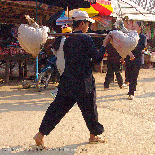 man carrying bags - vietnam, bảo lạc, hill tribes, indigenous, man, stick, twin baskets, walking