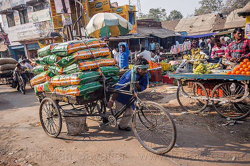 man pushing cargo tricycle with heavy load of freight (india), bags, bearer, cargo trike, freight tricycle, freight trike, moving, people, sacks, street, street market, transport, transportation, transporting, varanasi, walking