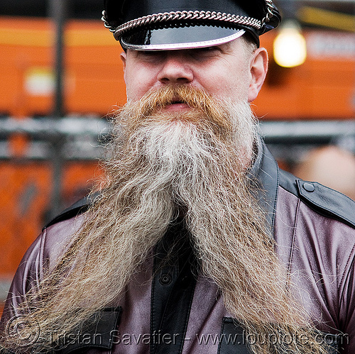 man with forked beard - up your alley fair (san francisco), beard, leather, man