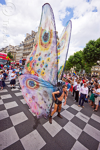 man with giant butterfly wings, butterfly costume, festival, gay pride, man, paris, street, wings
