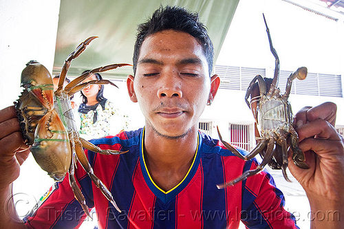 man with mud crabs, borneo, fish market, food, malaysia, man, mangrove crab, merchant, mud crab, portunidae, scylla crab, seafood, swimmer crabs, vendor