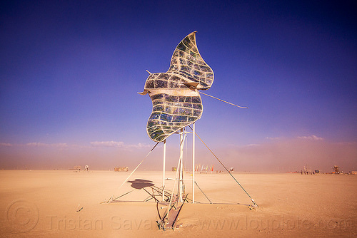 manta ray fly-by - burning man 2015, art installation, burning man, fish, fly-by, flying, manta ray, sculpture, stain glass