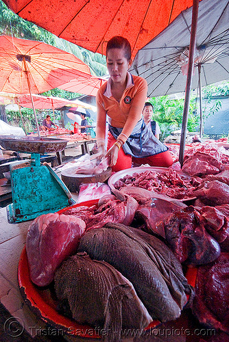 meat market - luang prabang (laos), laos, luang prabang, meat market, meat shop, merchant, raw meat, umbrellas, vendor, woman