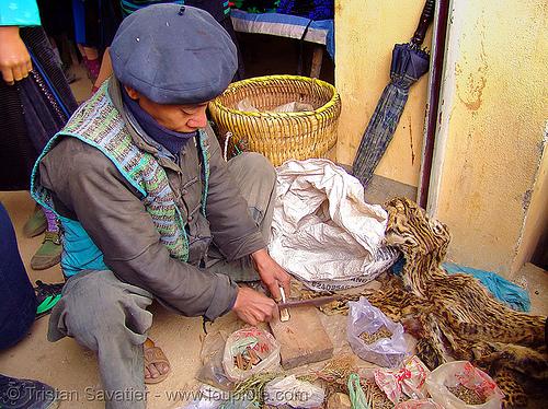 medicine man - vietnam, healer, healing, hill tribes, indigenous, market, medicinal herbs, medicinal plants, medicine man, mèo vạc, vietnam shaman