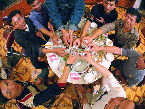 men drinking snake wine - cheers! - vietnam, alcohol, celebrating, circle, dinner, drinking, eating, friends, friendship, house party, liquor, men, rice wine, round table, shot glasses, vietnam