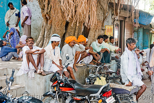 men sitting under banyan tree (india), banyan, men, sailana, sitting, street