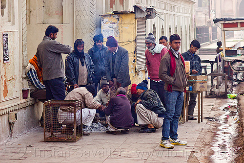 men warming up around small bonfire on sidewalk - lucknow (india), cold, curb, fire, group, people, smoke, street, winter