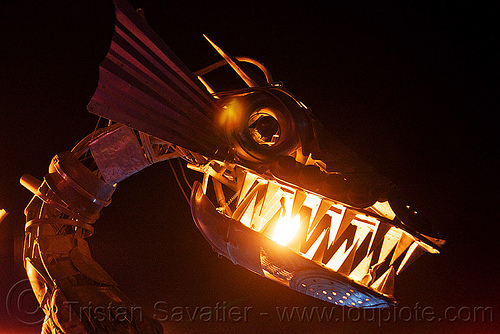 metal dragon head with fire, animated, art car, burning man, flame, kinetic, night, sculpture, teeth, tin pan dragon