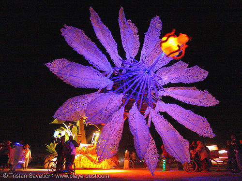miracle grow - giant flower - burning-man 2005, abundant sugar, art car, burning man, dolab, giant flower, hope flower, miracle grow, night, patrick shearn, purple